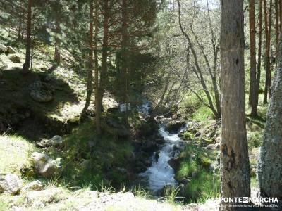 El pinar del Puerto de Navafría;castañar del tiemblo;camino smith;nieve en madrid